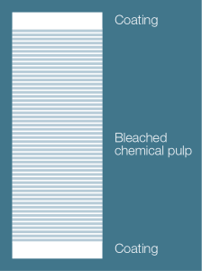 Illustration of solid bleached board layers
