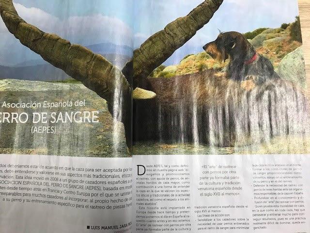 Printed magazine with waviness