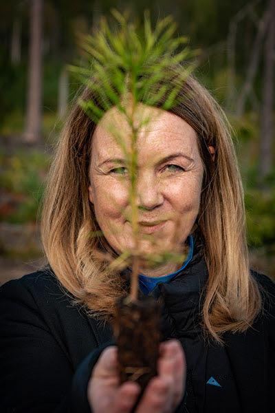Landsbygdsminister Jennie Nilsson håller upp en tallplanta under ett besök i Holmens skog.