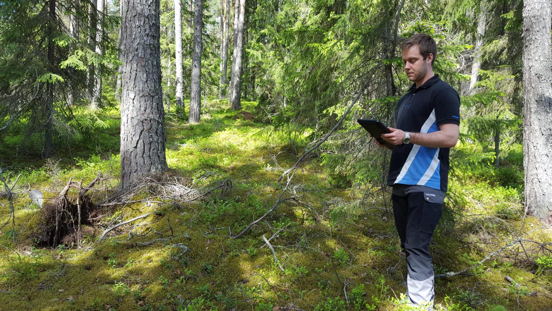 Virkesköparen Emil granskar skogen runt om och jämför med data i paddan.