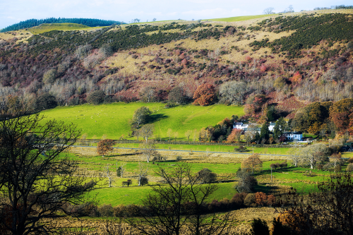 View over green fields close to Close Farm