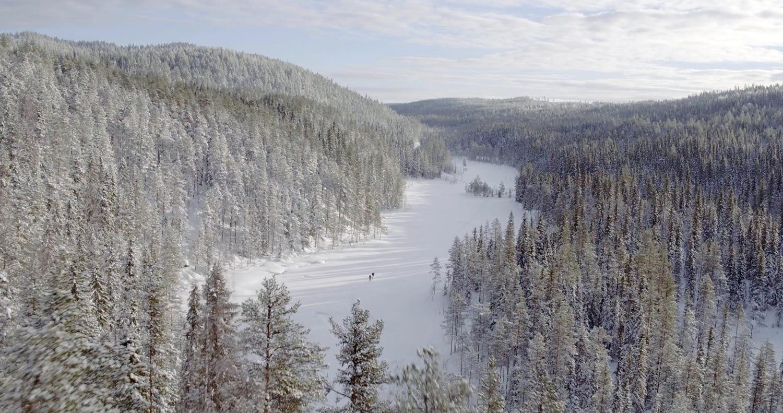 Vintervy i Holmens kunskapsskog Kunnådalen. Foto: Nils Bjugstam