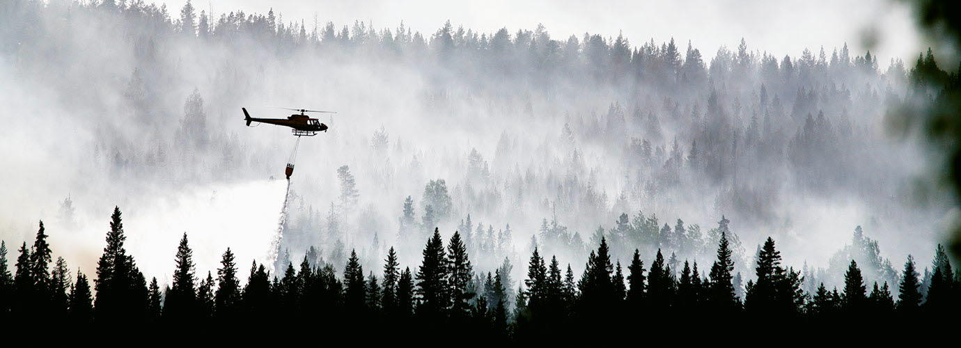 helicopter extinguishes forest fire