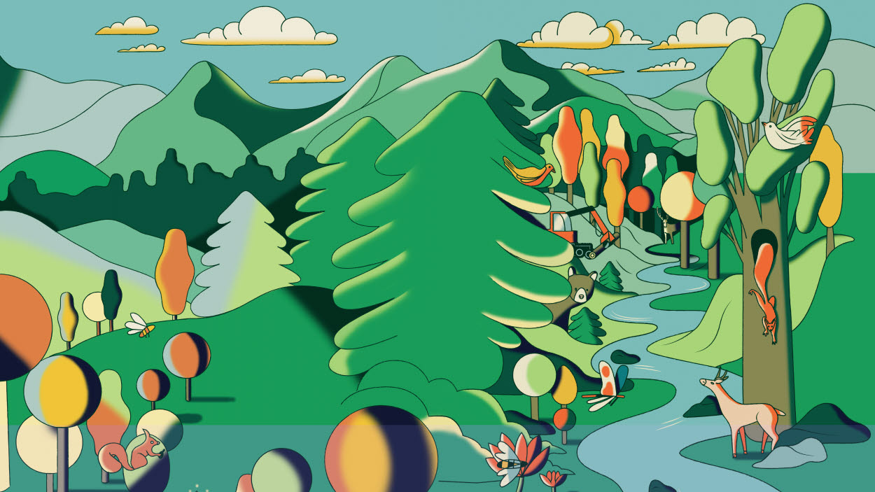 Colourful illustration of forest